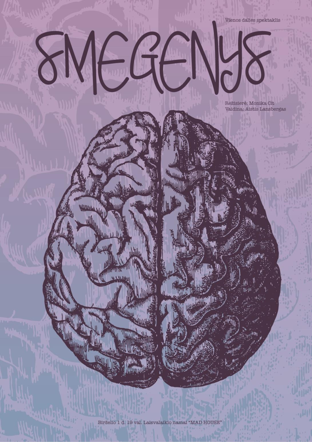 smegenysS.jpg